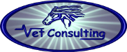 Vet Consulting