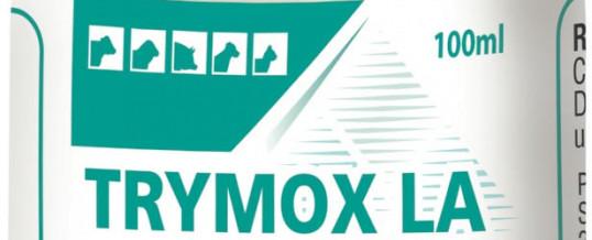 TRYMOX LA inj. (amoksicilin)